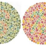 ¿Eres daltónico?